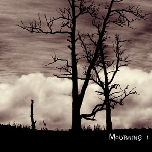 Lost In Desolation - Mourning I (2014)